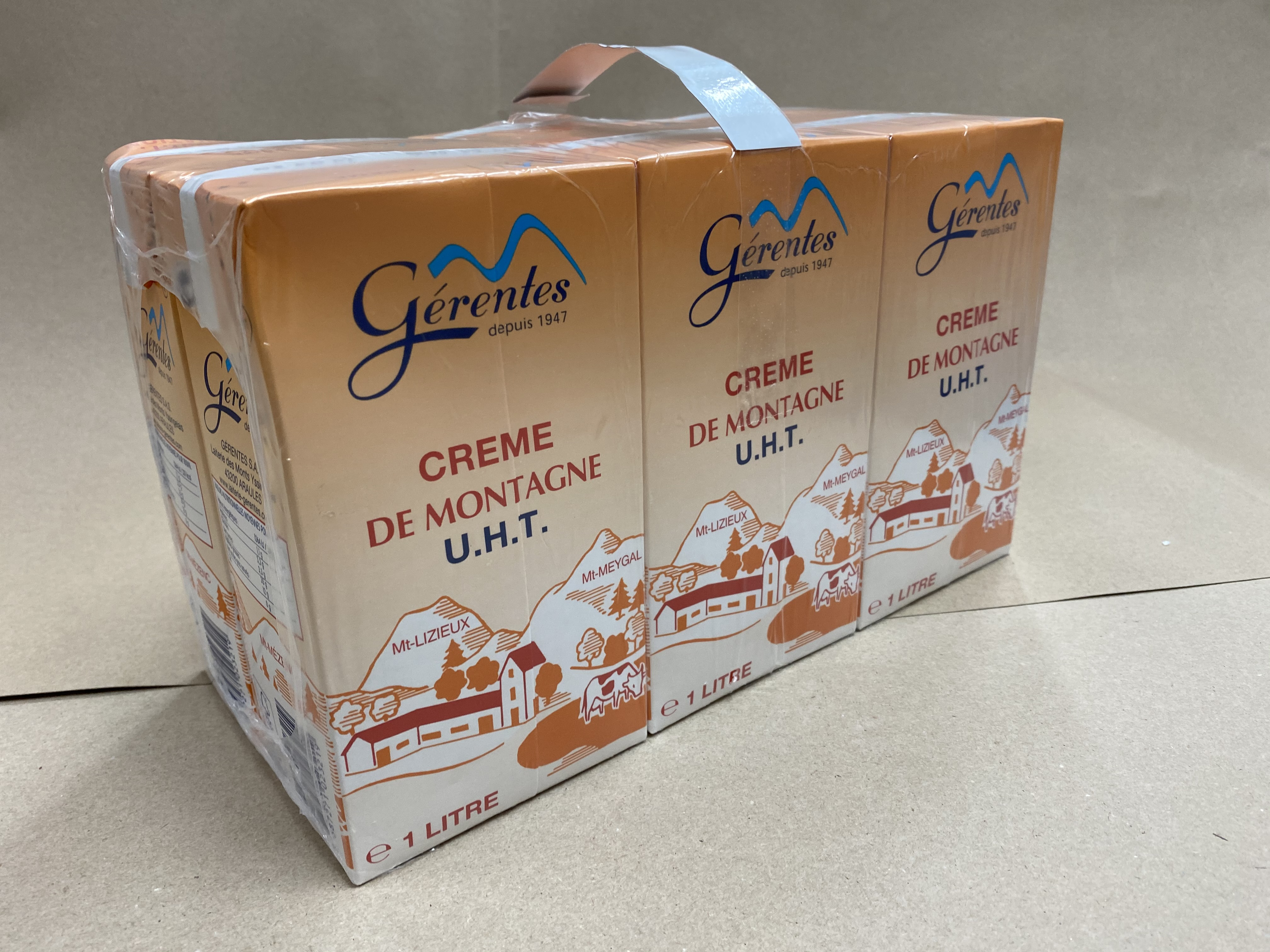 CREME LIQUIDE 35 % M.G GERENTES
